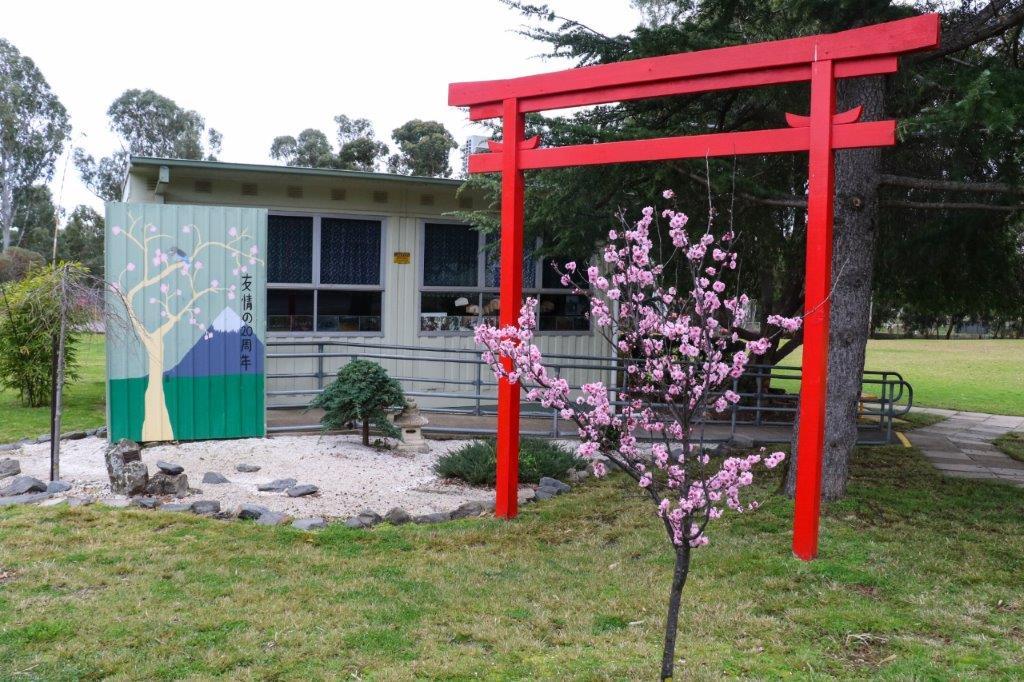 Japanese Torii with Cherry Blossom